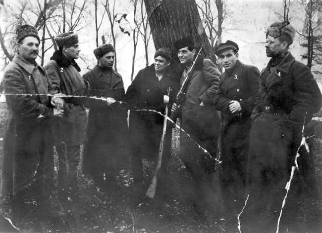 Partisanos de Vinnintsa, Ucrania